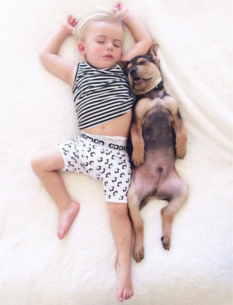 perro-con-la-boca-abierta